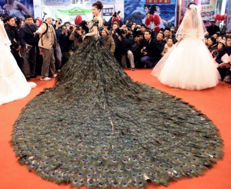 Vera Wang,peacock-feathers-wedding-dress-china-2009, cosst over a million dollars